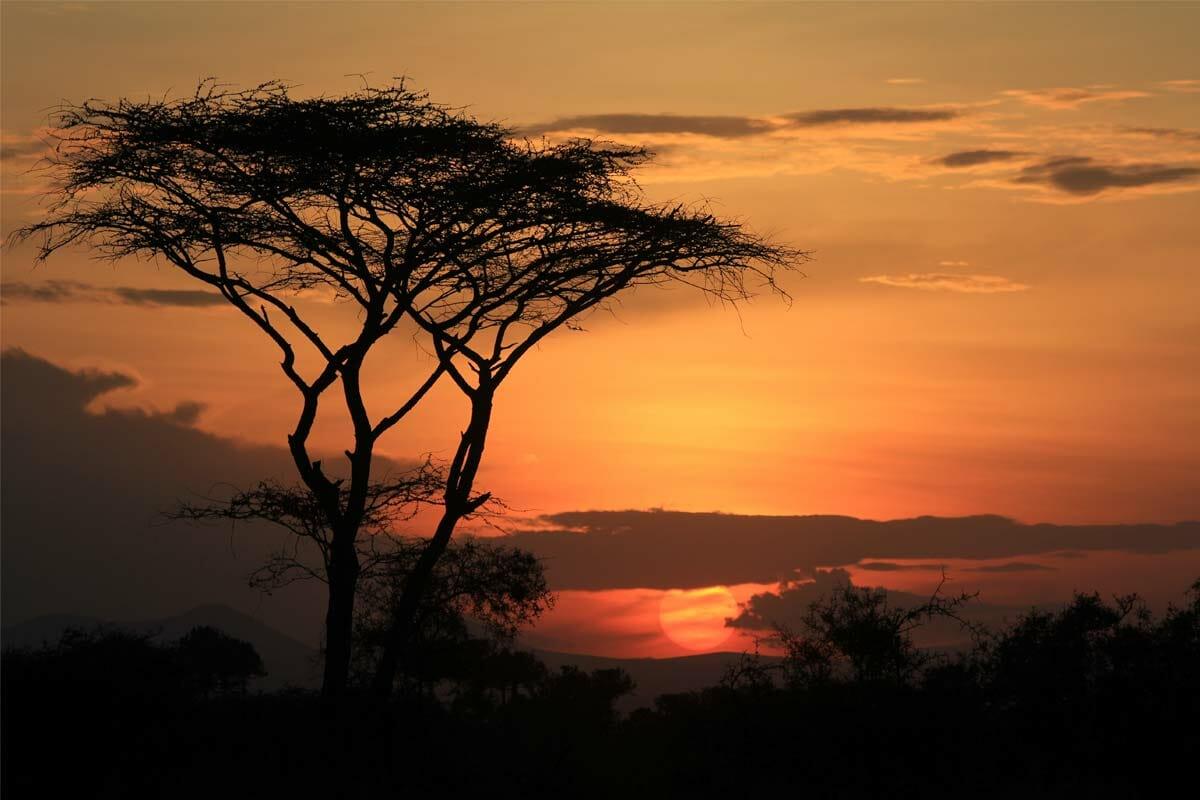 Abendhimmel Serengeti mit Klüger Reisen