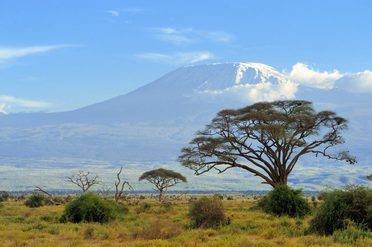 Kenia: Safari Tsavo und Amboseli Nationalpark 4 Tage