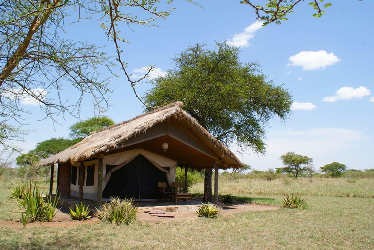 Tented Camp Serengeti mit Klüger Reissen