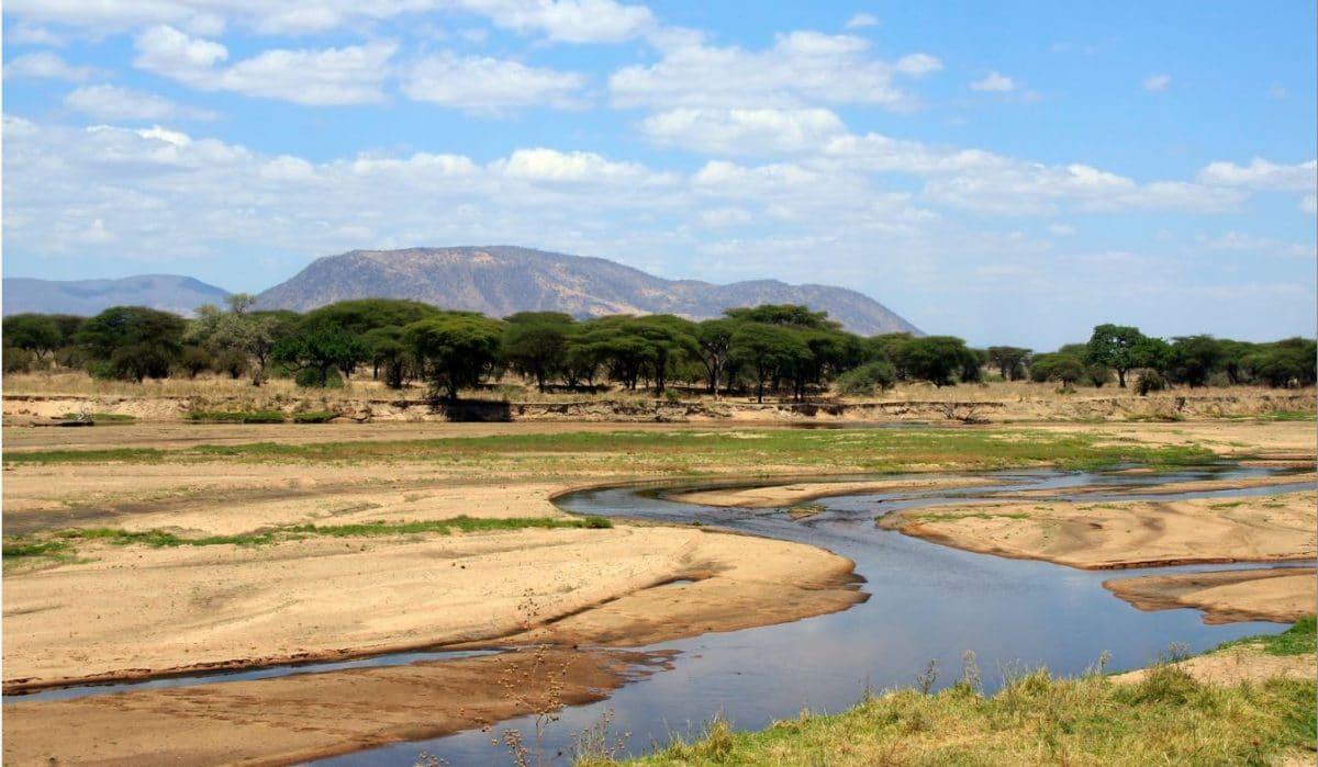 Tarangire Safari mit Klüger Reisen