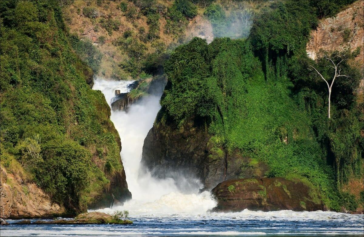 Uganda_Murchison_Falls_Klueger_Reisen