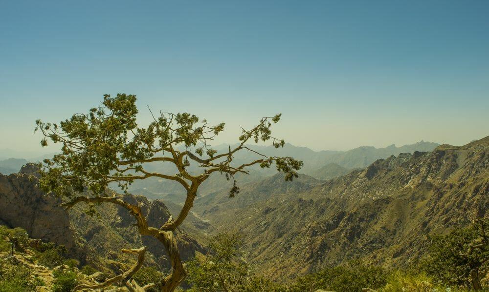 Jabal Al Hada_Saudi Arabien_Klueger_Reisen